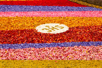 Flower carpets019