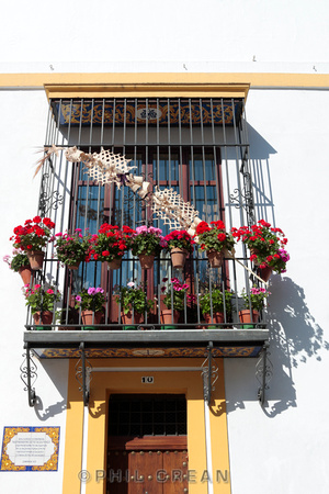 Phil crean photography seville typical geranium covered balcony in seville - Houses with covered balconies ...